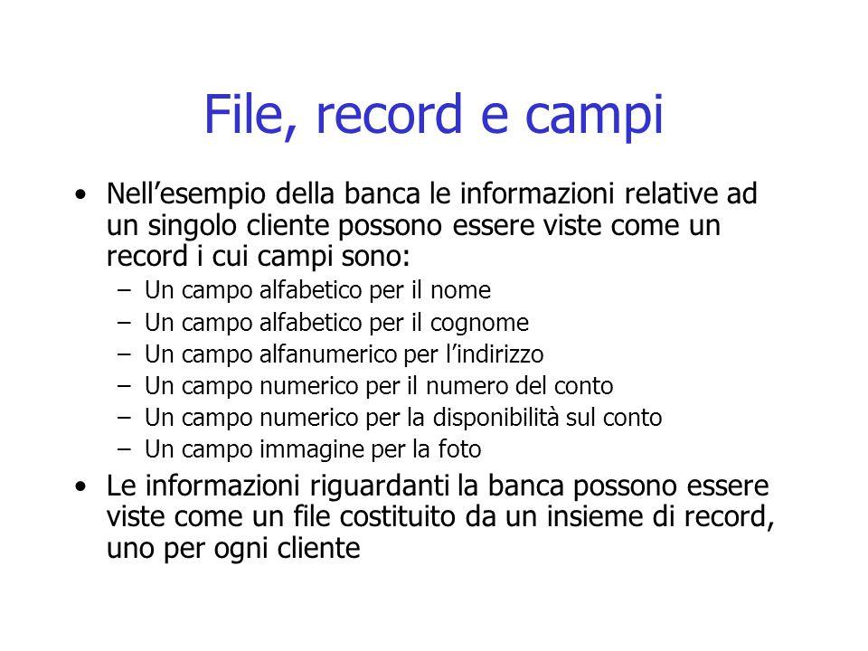 File, record e campi Nell'esempio della banca le informazioni relative ad un singolo cliente possono essere viste come un record i cui campi sono: