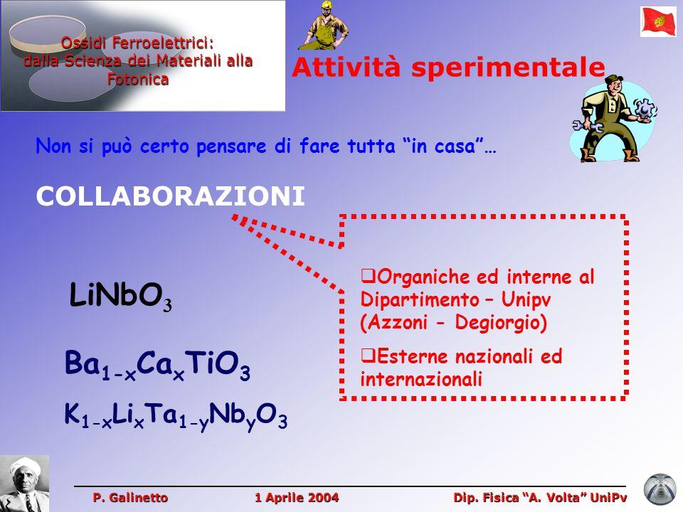 LiNbO3 Ba1-xCaxTiO3 Attività sperimentale COLLABORAZIONI