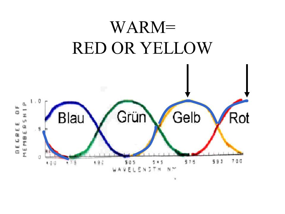WARM= RED OR YELLOW