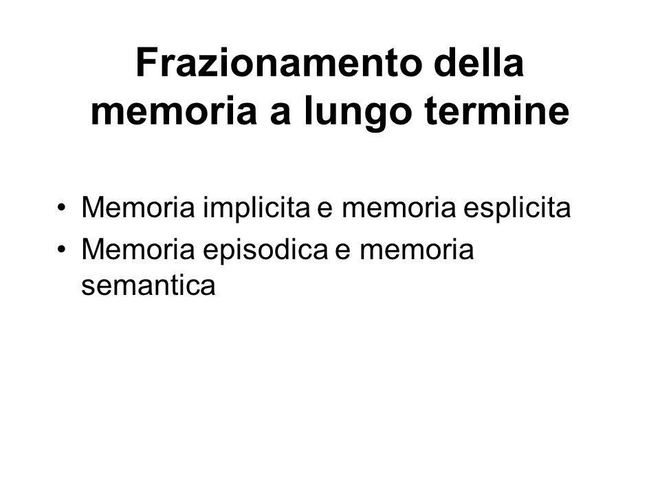 Frazionamento della memoria a lungo termine
