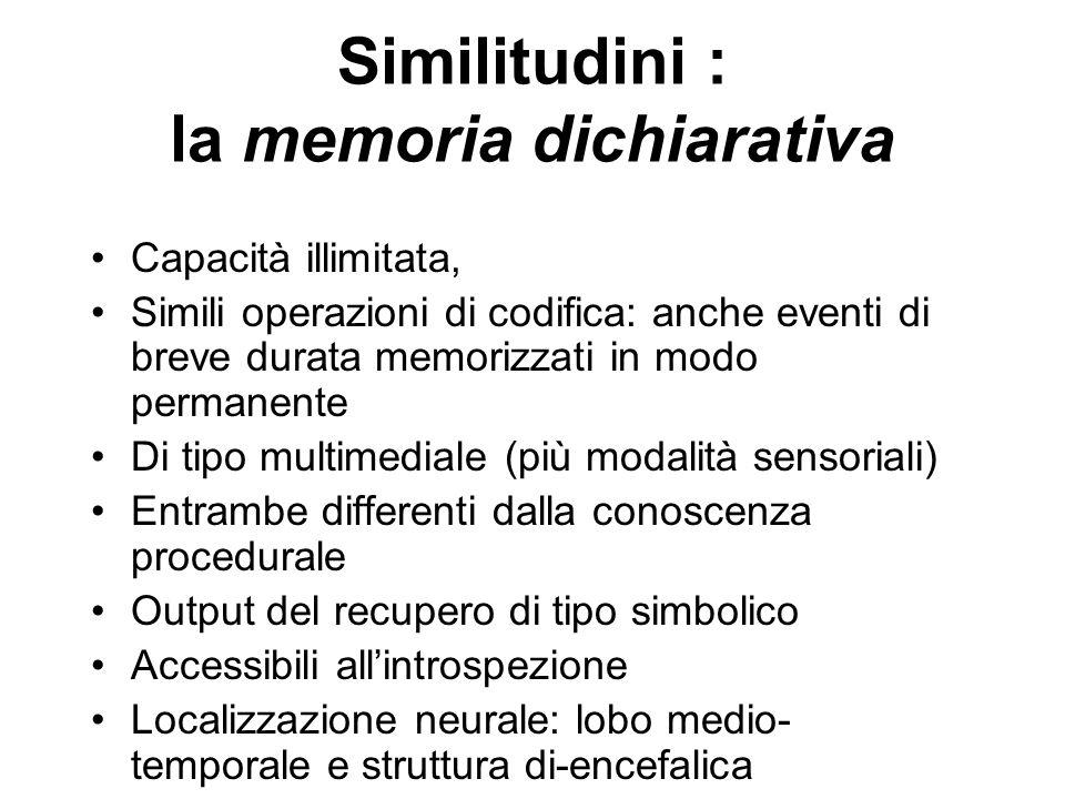 Similitudini : la memoria dichiarativa