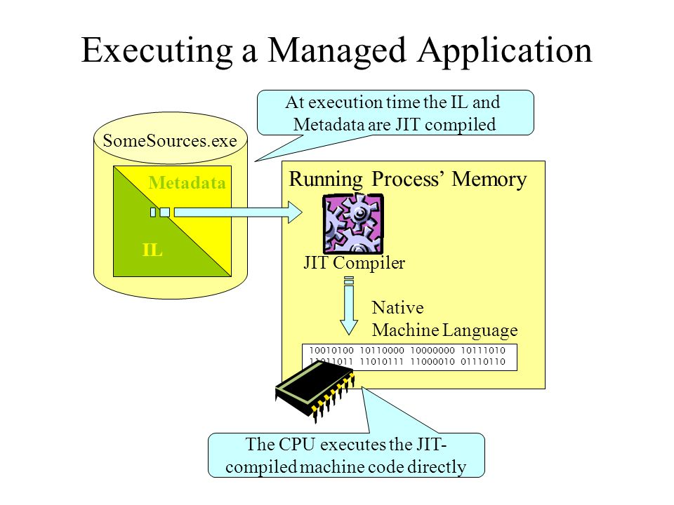 Executing a Managed Application