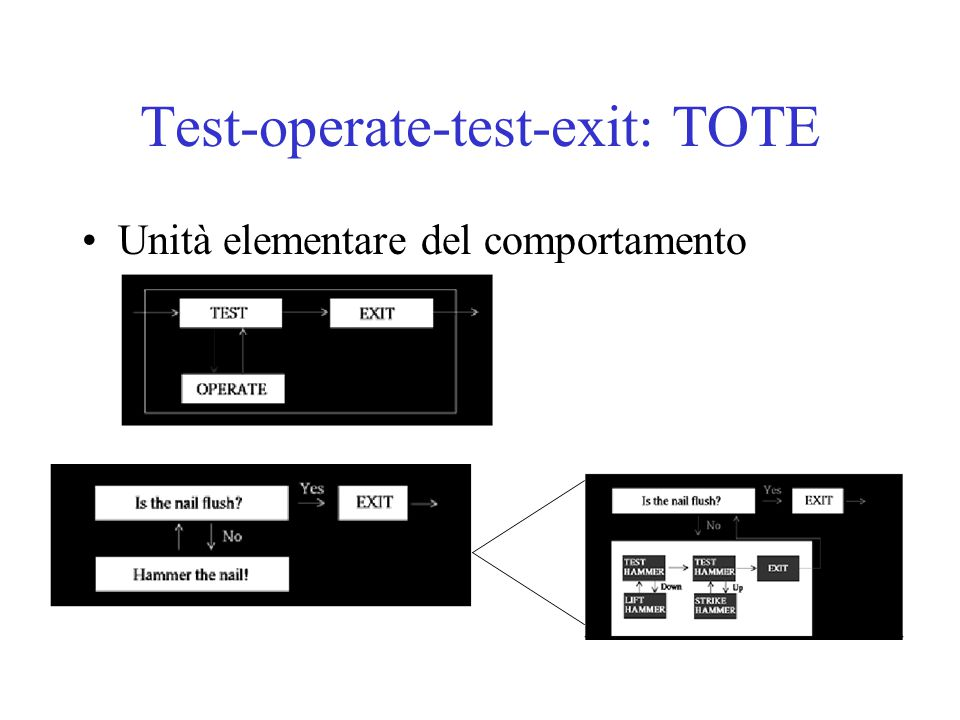 Test-operate-test-exit: TOTE