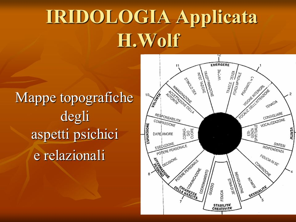 IRIDOLOGIA Applicata H.Wolf