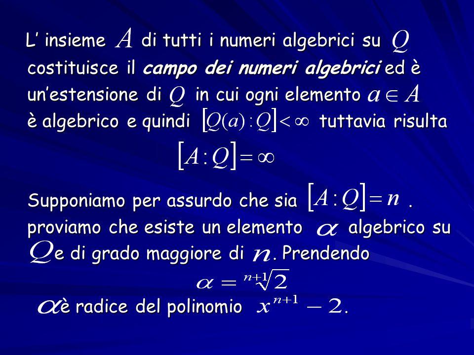 L' insieme di tutti i numeri algebrici su