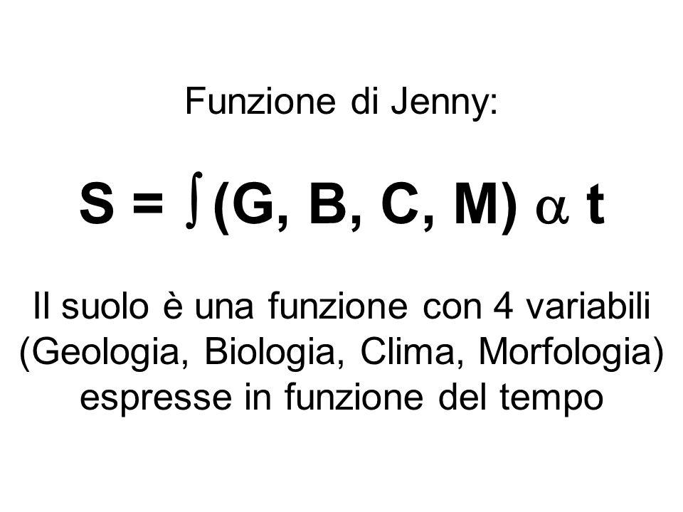 S =  (G, B, C, M)  t Funzione di Jenny: