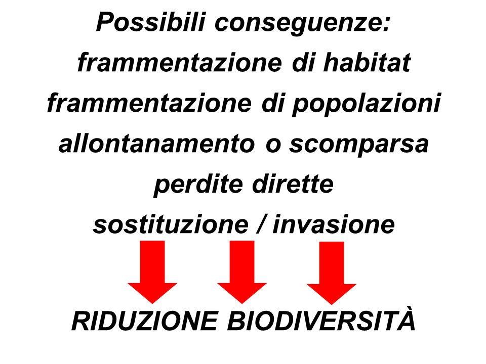 Possibili conseguenze: frammentazione di habitat