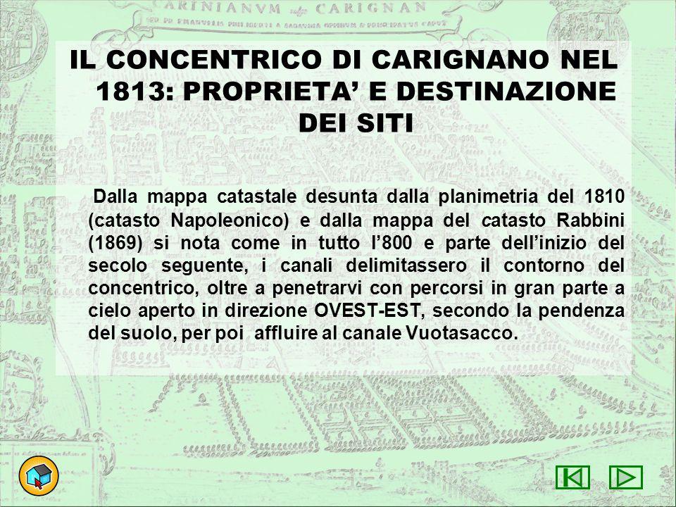 IL CONCENTRICO DI CARIGNANO NEL 1813: PROPRIETA' E DESTINAZIONE DEI SITI