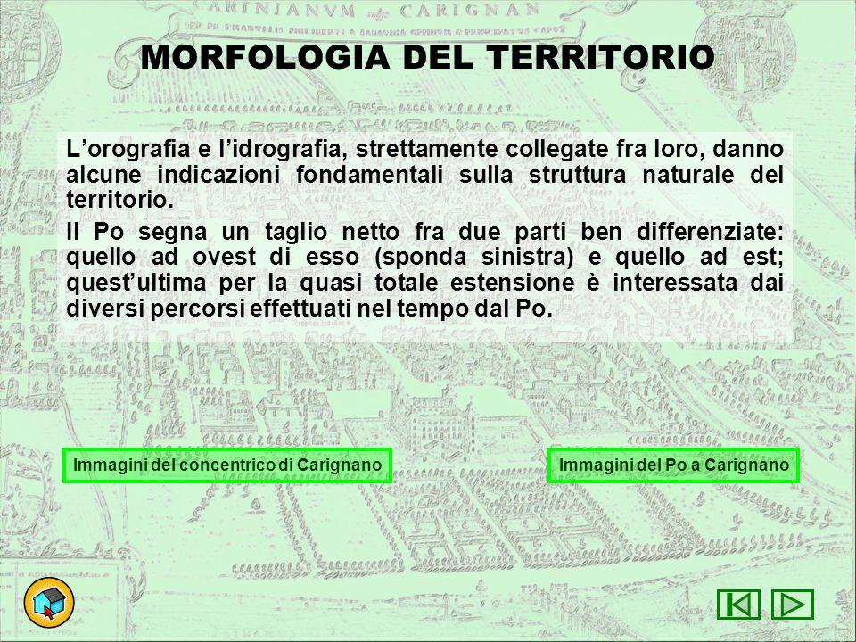 MORFOLOGIA DEL TERRITORIO