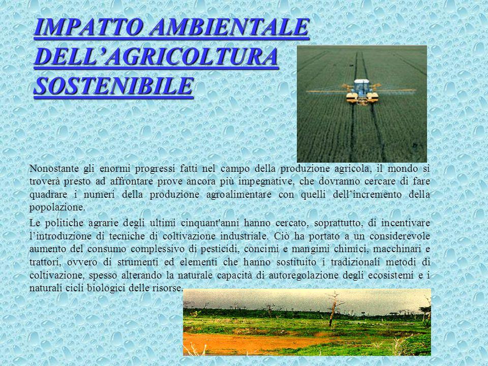 IMPATTO AMBIENTALE DELL'AGRICOLTURA SOSTENIBILE