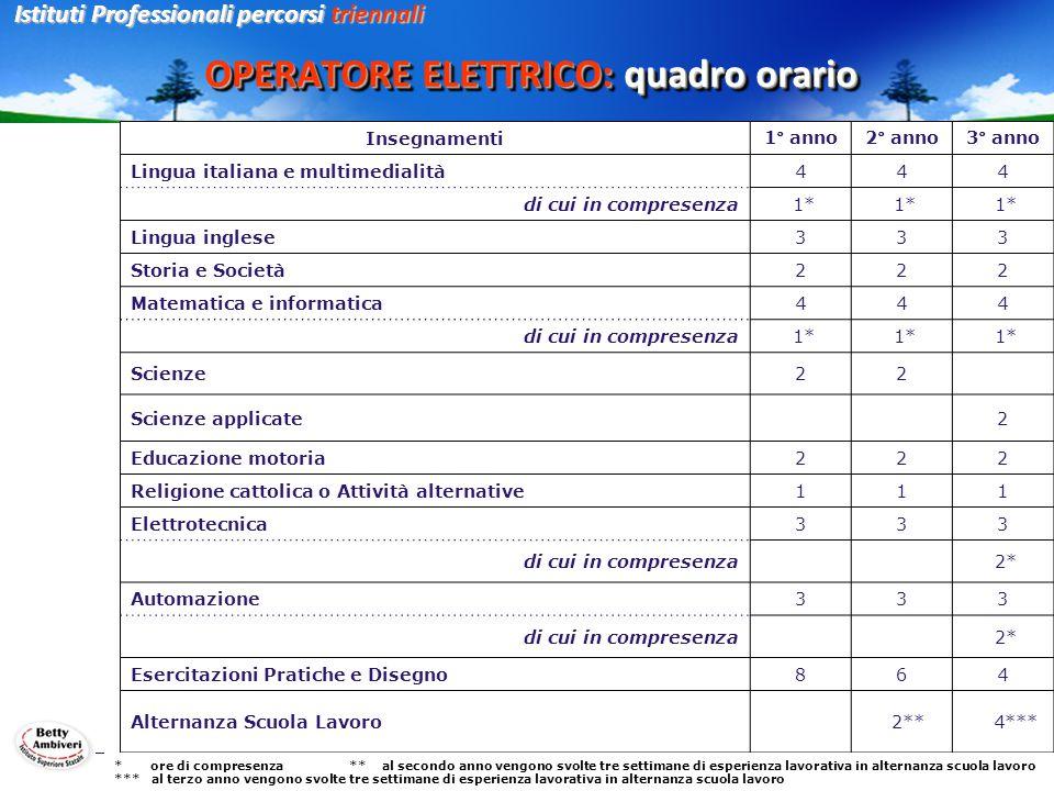 OPERATORE ELETTRICO: quadro orario