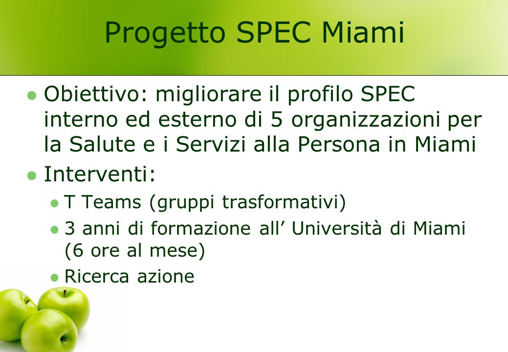Progetto SPEC Miami Obiettivo: migliorare il profilo SPEC interno ed esterno di 5 organizzazioni per la Salute e i Servizi alla Persona in Miami.