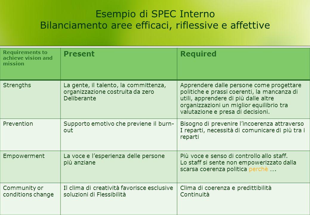 Esempio di SPEC Interno Bilanciamento aree efficaci, riflessive e affettive
