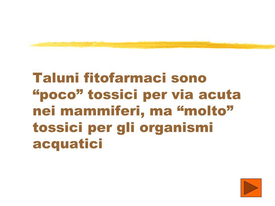 Taluni fitofarmaci sono poco tossici per via acuta nei mammiferi, ma molto tossici per gli organismi acquatici