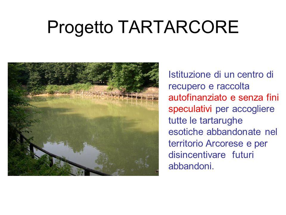 Progetto TARTARCORE
