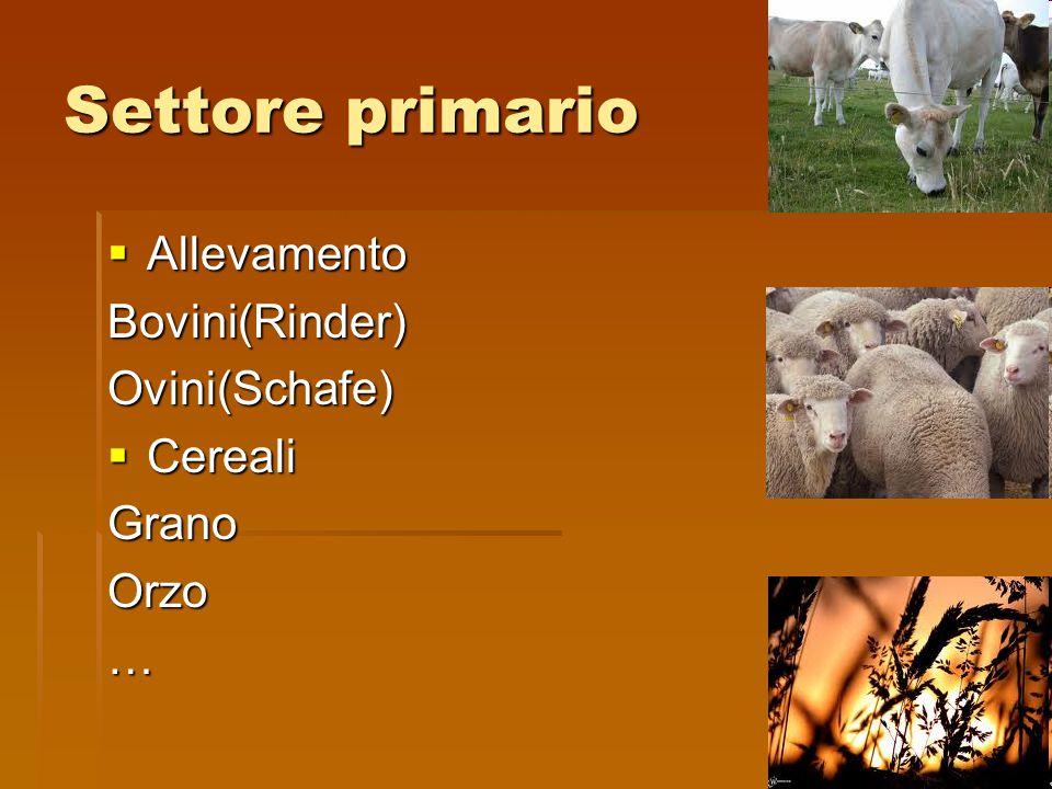 Settore primario Allevamento Bovini(Rinder) Ovini(Schafe) Cereali