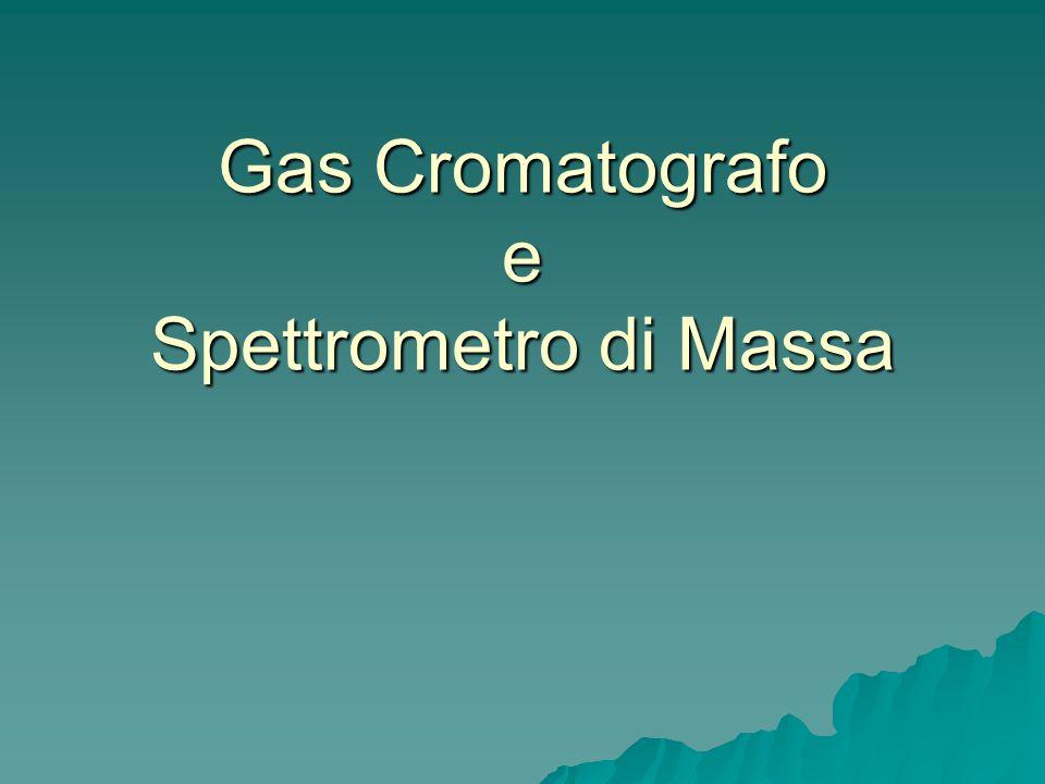 Gas Cromatografo e Spettrometro di Massa