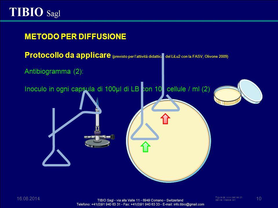 METODO PER DIFFUSIONE Protocollo da applicare (previsto per l'attività didattica del LiLu2 con la FASV, Olivone 2009)