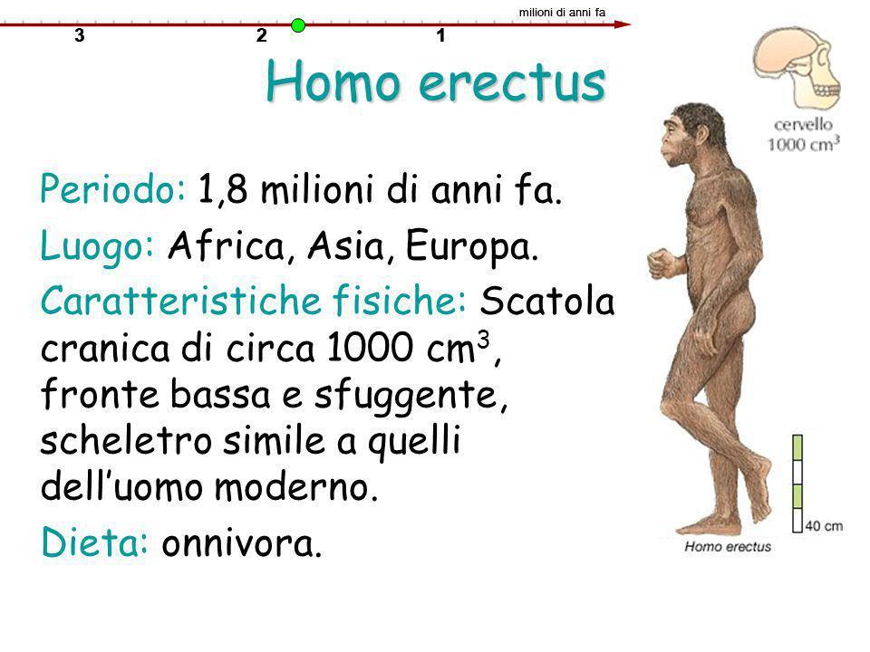 Homo erectus Periodo: 1,8 milioni di anni fa.