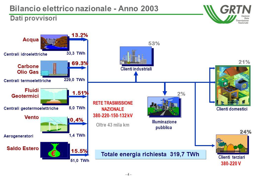 Bilancio elettrico nazionale - Anno 2003