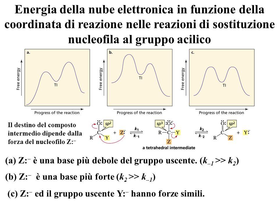 Energia della nube elettronica in funzione della coordinata di reazione nelle reazioni di sostituzione nucleofila al gruppo acilico