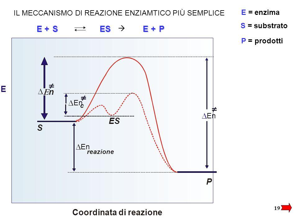 Coordinata di reazione D En D