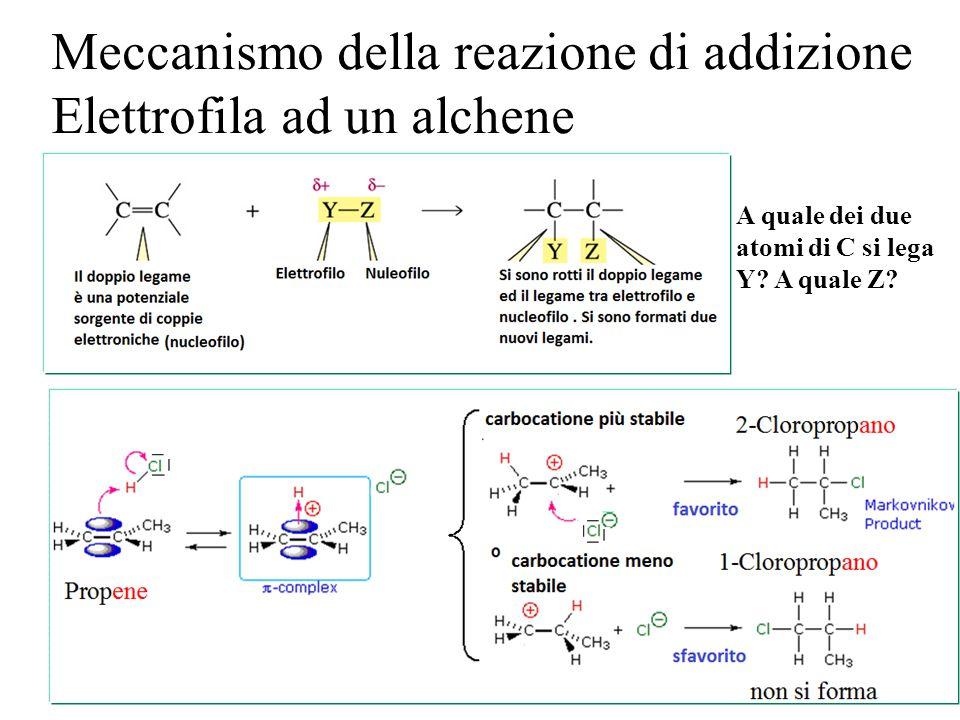 Meccanismo della reazione di addizione Elettrofila ad un alchene
