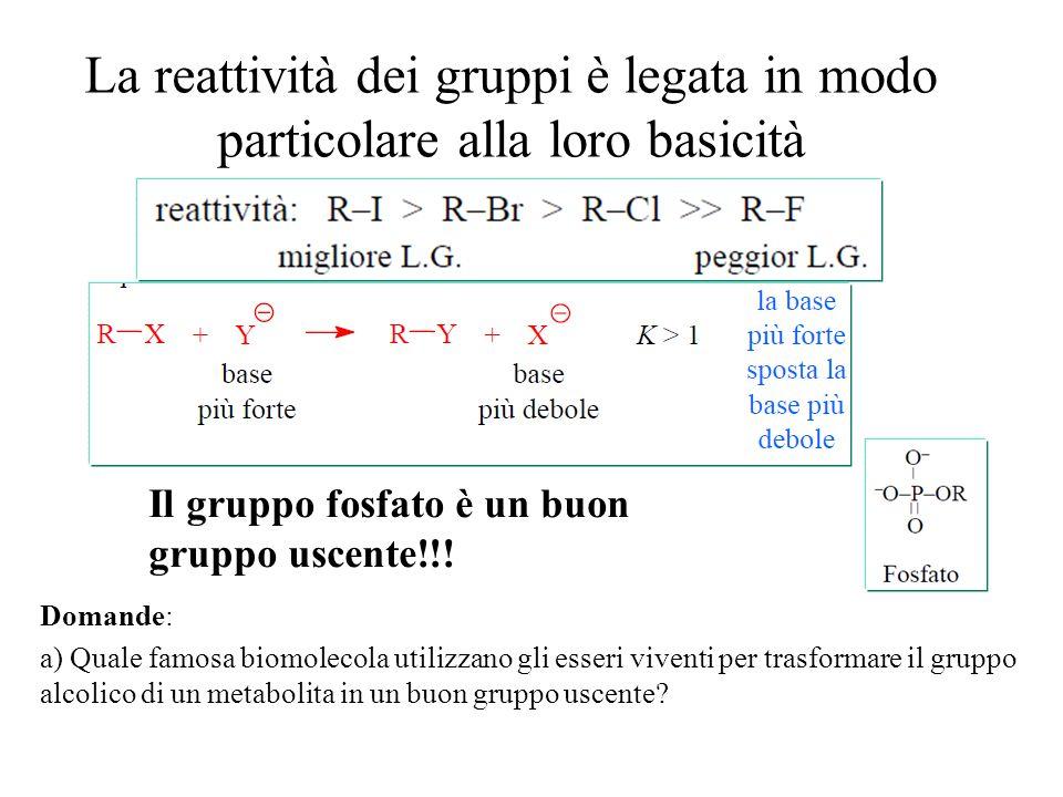 La reattività dei gruppi è legata in modo particolare alla loro basicità