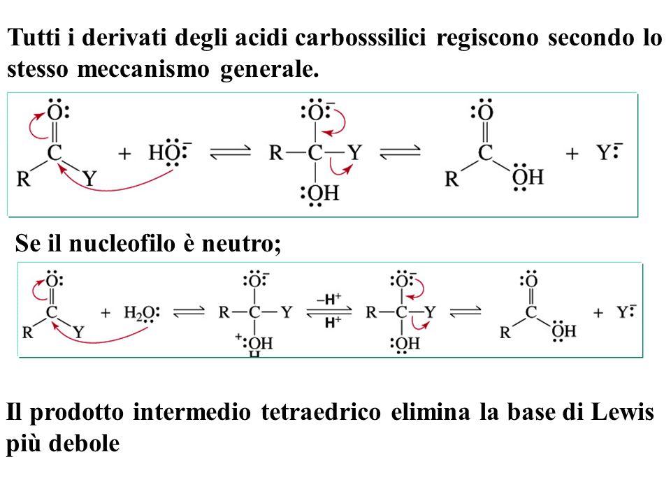Tutti i derivati degli acidi carbosssilici regiscono secondo lo