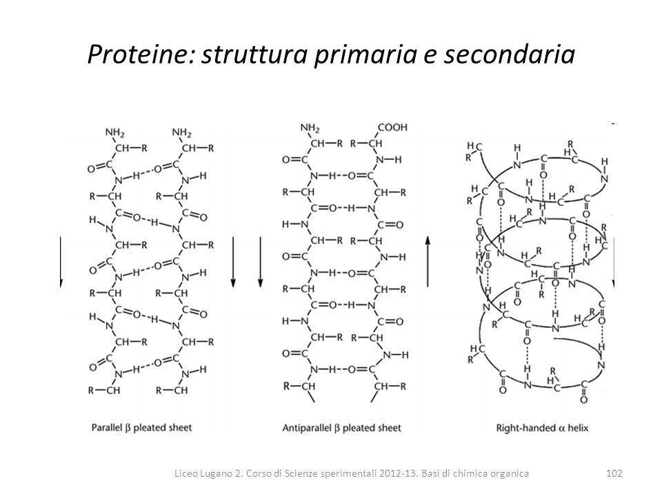Proteine: struttura primaria e secondaria