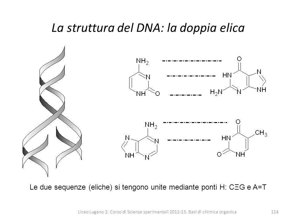 La struttura del DNA: la doppia elica