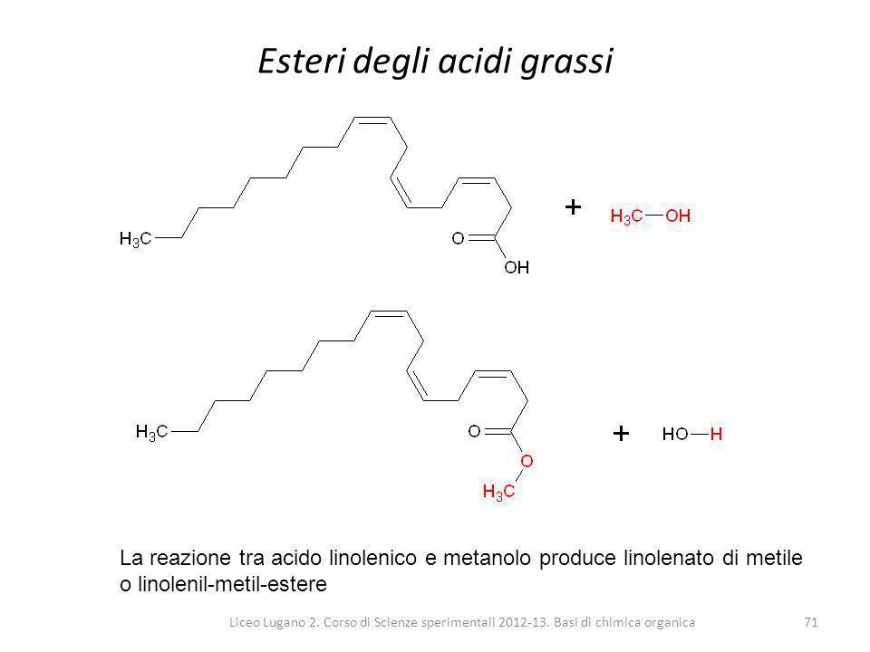 Esteri degli acidi grassi