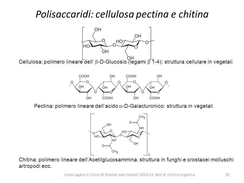 Polisaccaridi: cellulosa pectina e chitina