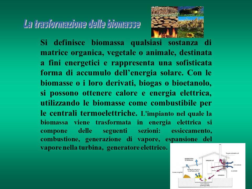 La trasformazione delle biomasse