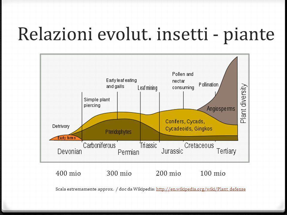 Relazioni evolut. insetti - piante