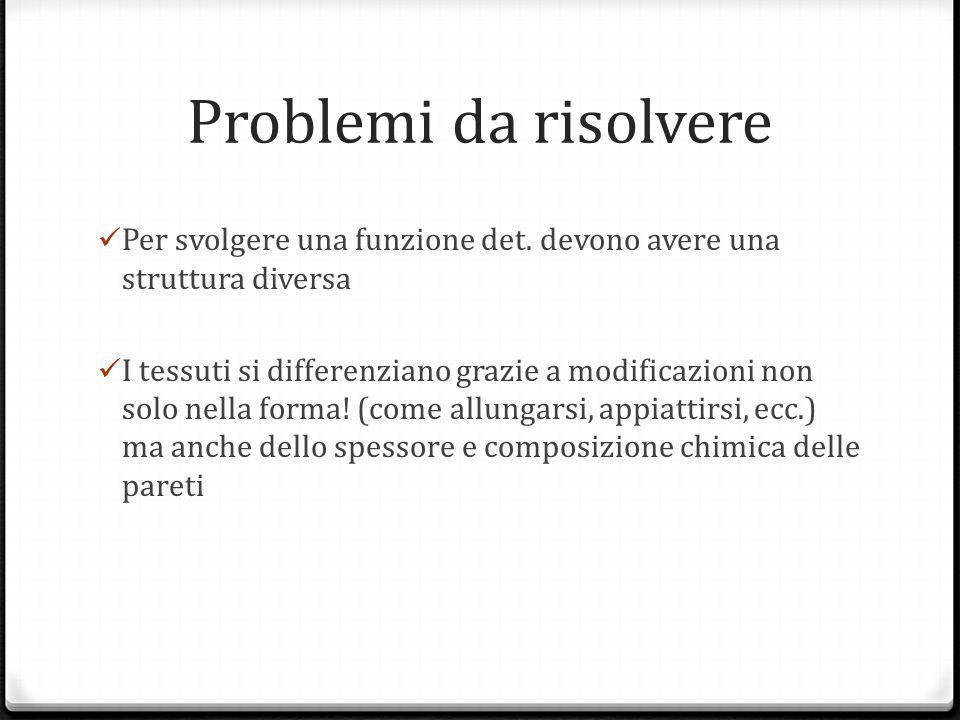 Problemi da risolvere Per svolgere una funzione det. devono avere una struttura diversa.