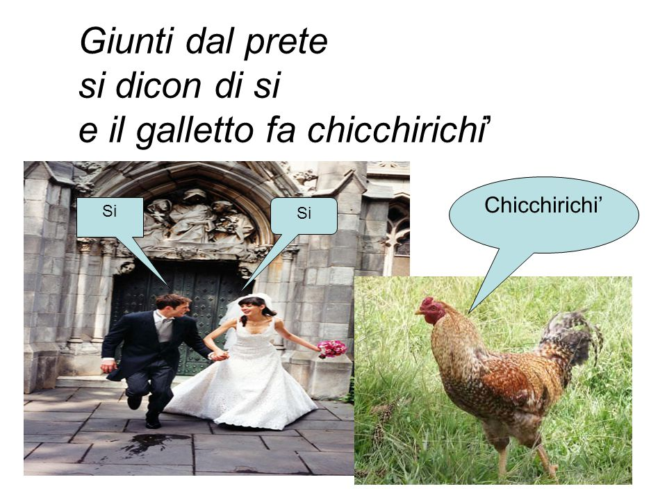 e il galletto fa chicchirichi'