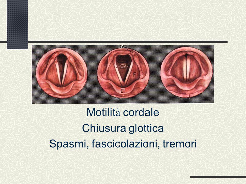 Fibroscopia endoscopica 3) Esame in fonazione