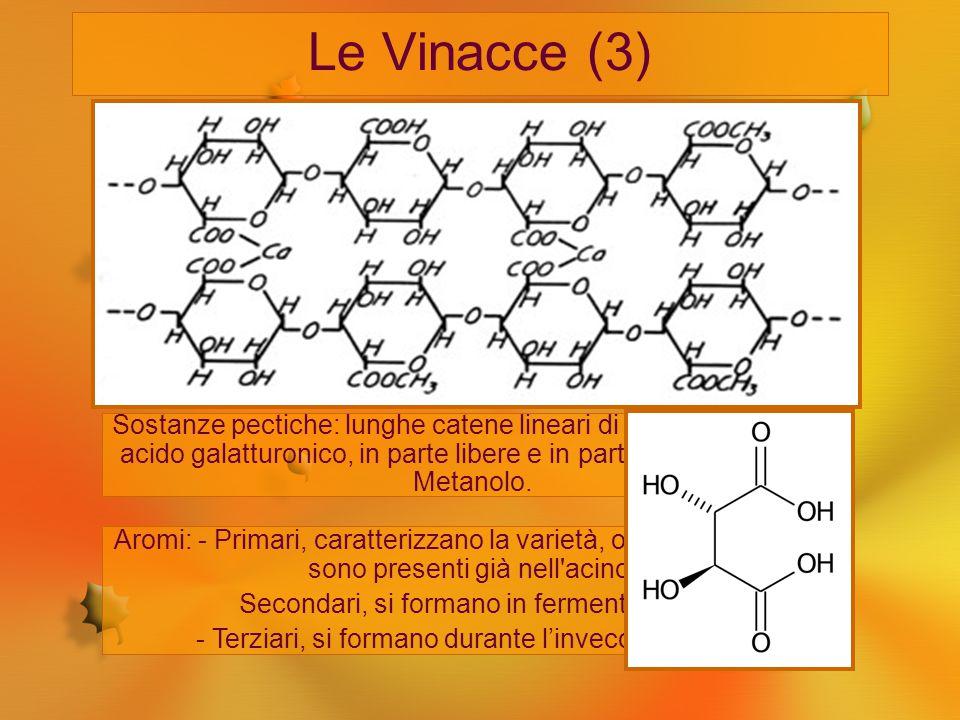 Le Vinacce (3) Acqua: si può arrivare al 10%