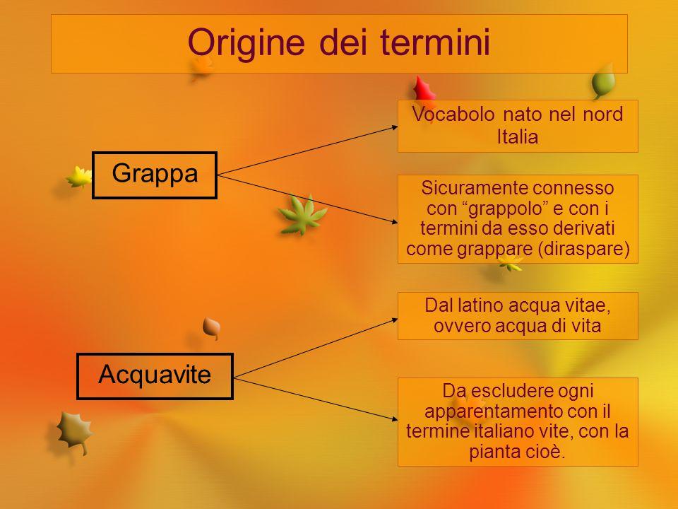 Origine dei termini Grappa Acquavite Vocabolo nato nel nord Italia