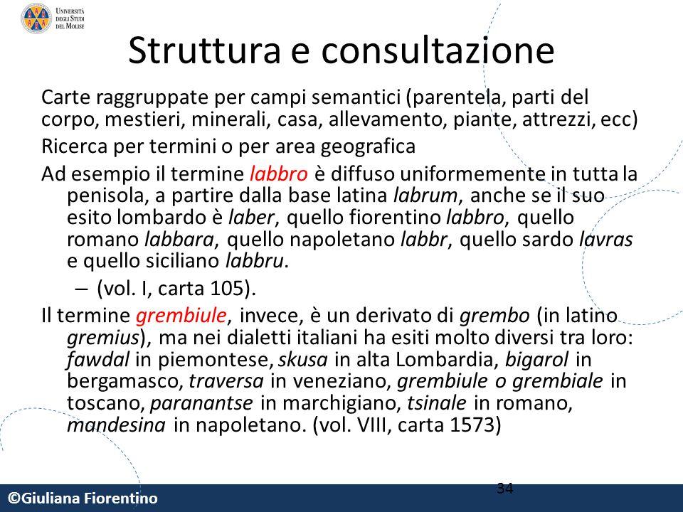 Struttura e consultazione