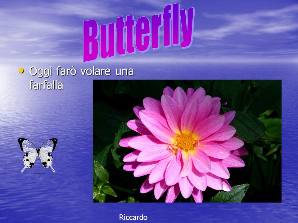Butterfly Oggi farò volare una farfalla Riccardo