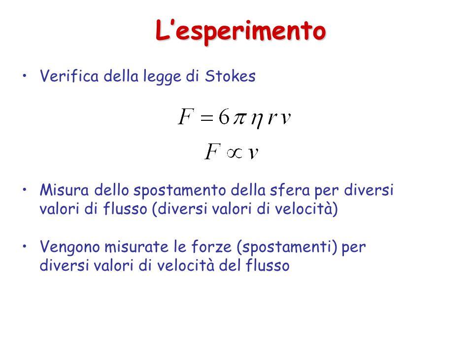 L'esperimento Verifica della legge di Stokes