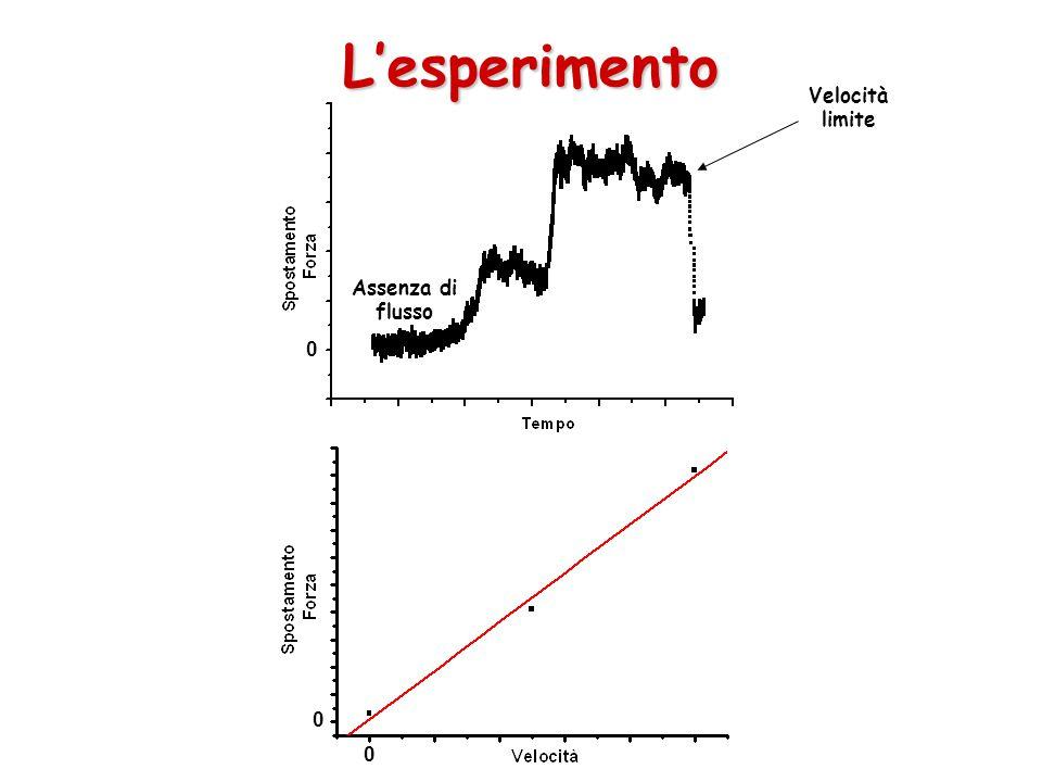 L'esperimento Velocità limite Assenza di flusso