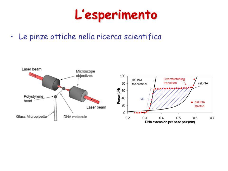 L'esperimento Le pinze ottiche nella ricerca scientifica