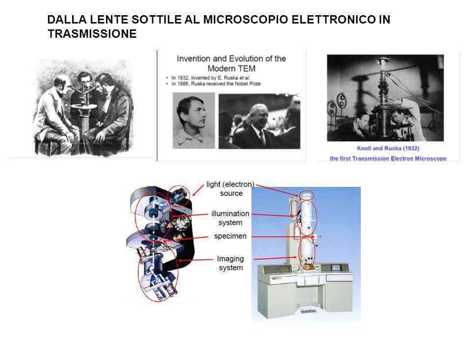 DALLA LENTE SOTTILE AL MICROSCOPIO ELETTRONICO IN TRASMISSIONE