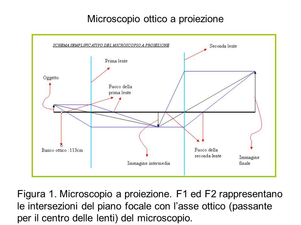 Microscopio ottico a proiezione