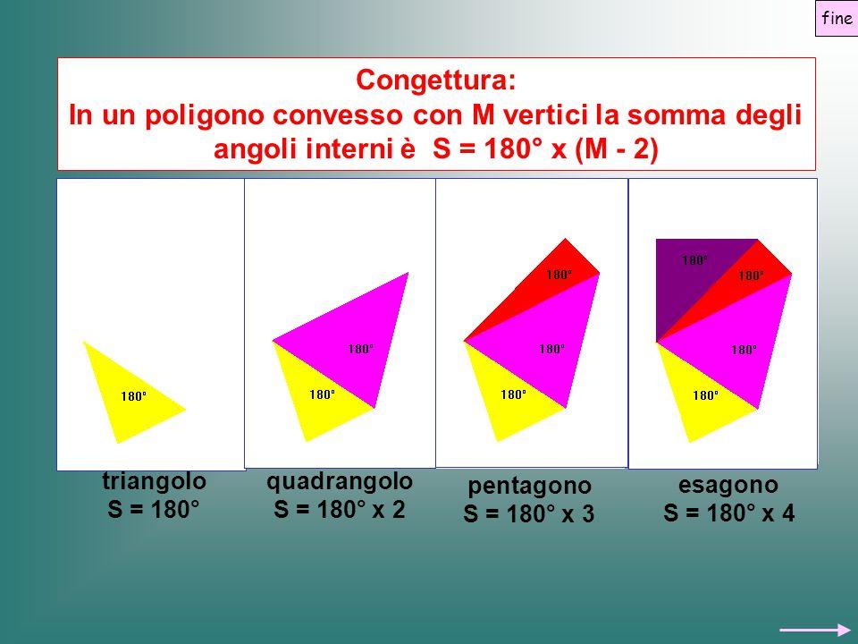 fine Congettura: In un poligono convesso con M vertici la somma degli angoli interni è S = 180° x (M - 2)