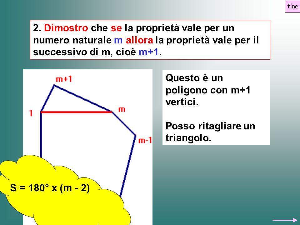 Questo è un poligono con m+1 vertici.