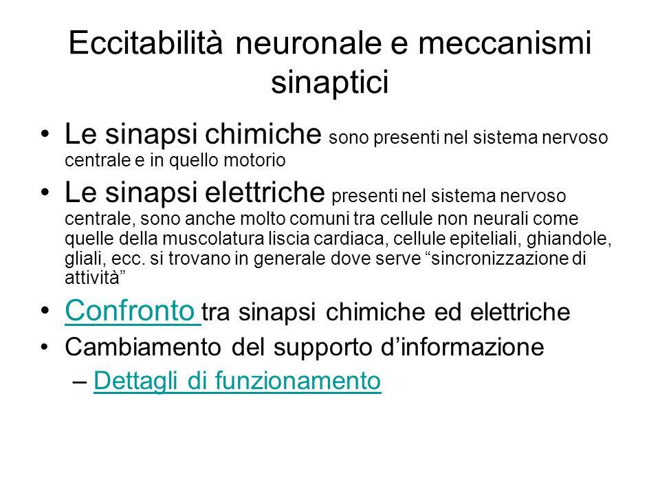 Eccitabilità neuronale e meccanismi sinaptici